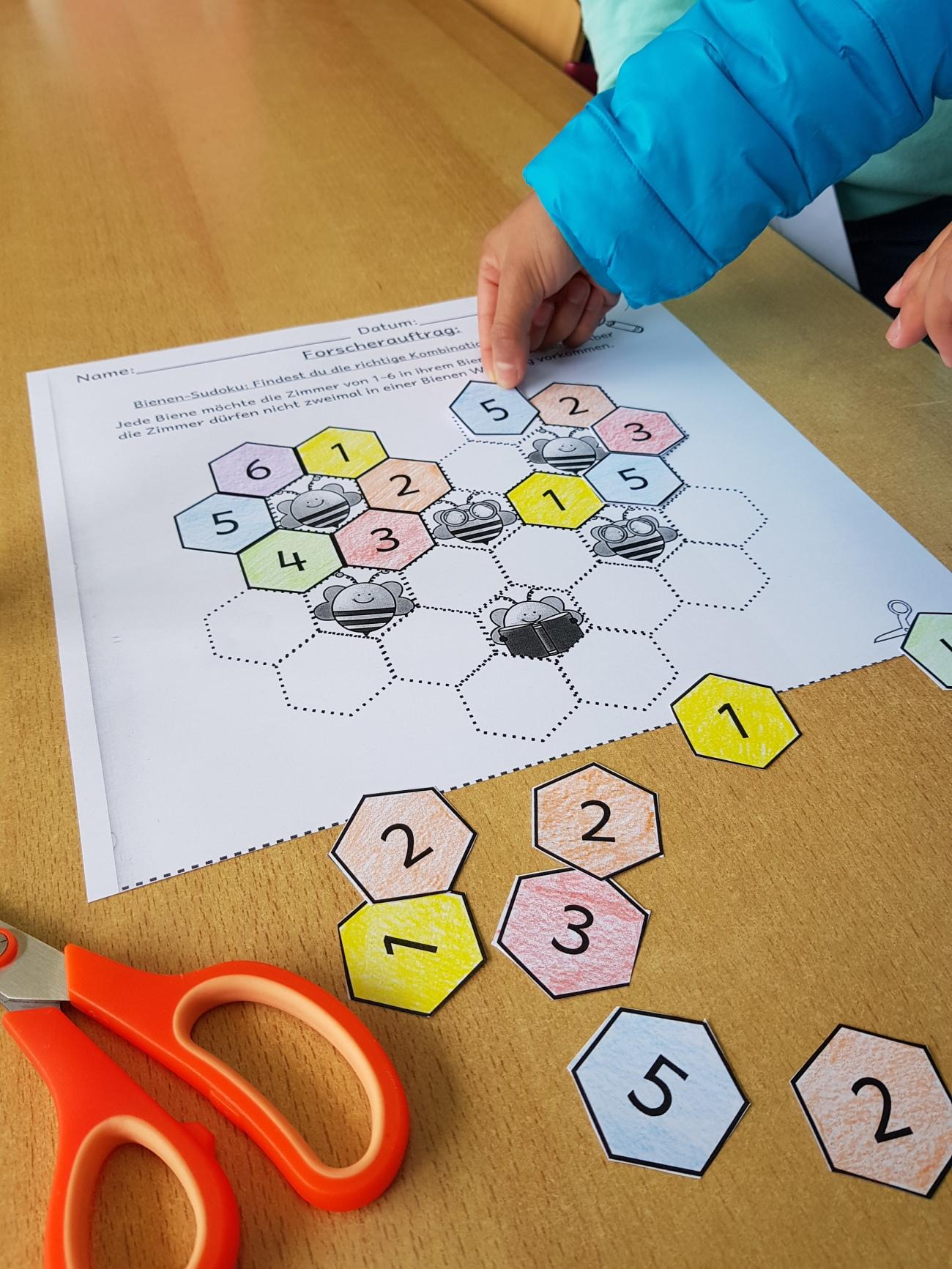 Sudoku mit Bienenwaben, finde Lösungswege durch Probieren, Nachdenken und selbstständiges Lernen